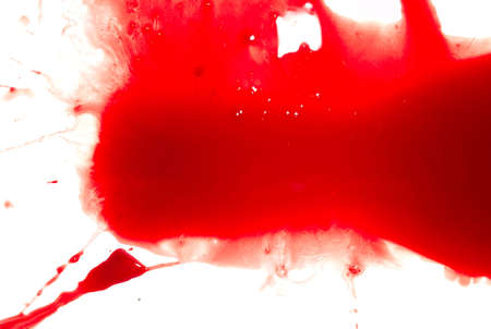 Abstract blood on white background Stock Photo - 4032279