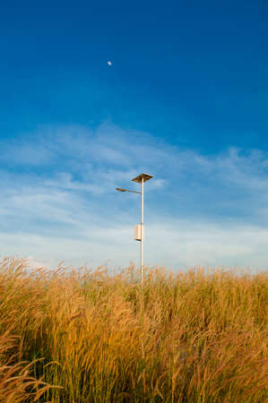 Electricity post and grass photo