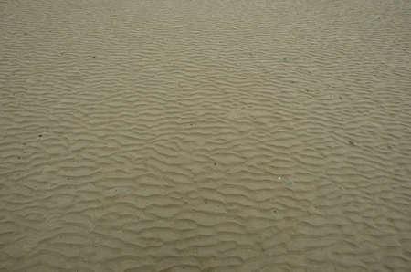 Pattern on the beach Stock Photo - 14077613