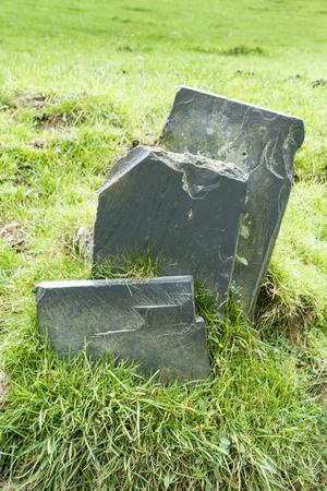fanned: Three slate slabs fanned, in bank of grass