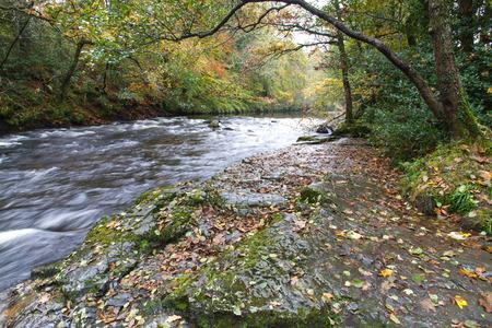 granite park: The River Dart at New Bridge, Holne. Dartmoor National Park, Devon, England, United Kingdom. Granite Bridge, autumn, fall, long exposure.