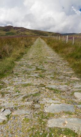 snowdonia: Track into distance heather wilderness. Conwy Snowdonia National park Gwynedd Wales United Kingdom
