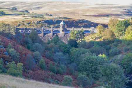 craig: Looking across valley to the Craig Goch dam and reservoir. Autumn fall  tree colours.