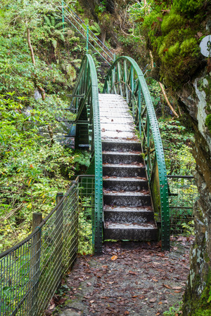 prefabricated: Possibly pre-fabricated metal footbridge in woodland.