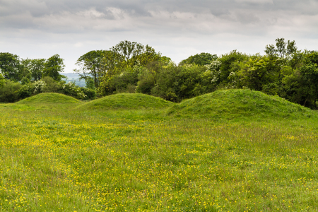 mounds: Row of three burial mounds, tumuli or barrows. Badbury Rings. Wimborne, Dorset, England, United Kingdom
