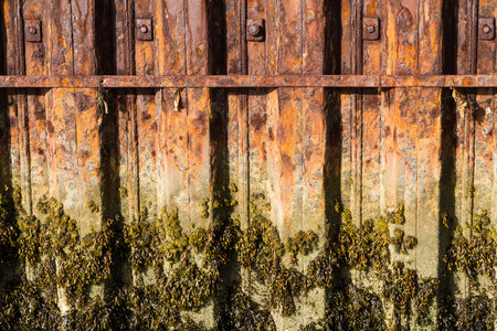 Rusting iron interlocked girders that form part of harbour harbour wall, water mark with seaweed.