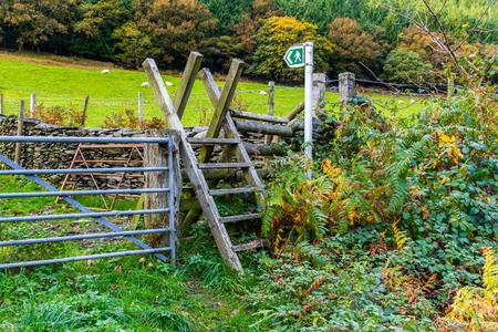 stile: Typical ladder stile, over dry stone wall, Snowdonia National Park, Gwynedd, Wales, United kingdom.