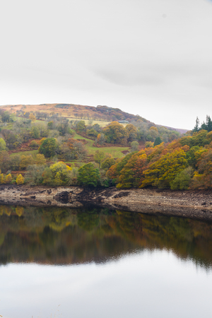 reservoirs: Trees on hill, reflected in water. United Kingdom. The Penygarreg Reservoir, part of Elan Valley Reservoirs, showing low water levels in autumn fall. Powys, Wales, United Kingdom.