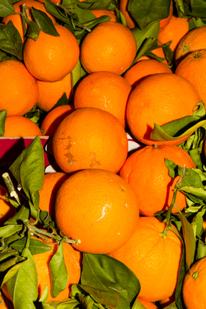 Italian food market stall with orange or Citrus sinensis piled. Stock Photo