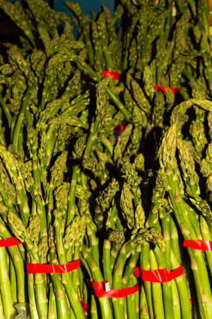Bunches of asparagus or Asparagus officinalis  tied with red ribbon, forming a background.