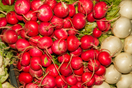 Radishes on display in market stall, red and white.