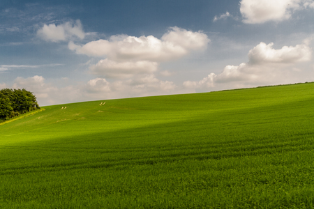 Rolling fields and meadows, English Coutryside. Stock Photo