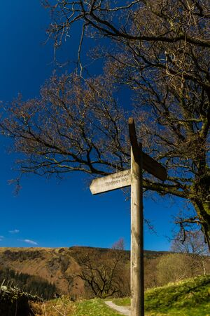 Three way wooden finger post, visible Permissive Path, Thirlmere Loop. Lake District National Park, England, UK, Portrait Фото со стока