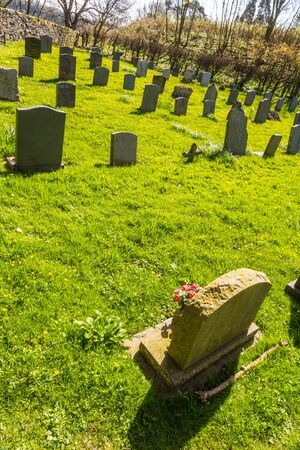 Small graves in grass graveyard, portrait.