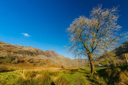 Beautiful Day in Winter Autumn Fall with tree and copyspace in blue sky. Cwm Croesor Valley, Snowdonia national Park, Gwynedd, Wales, UK, Landscape