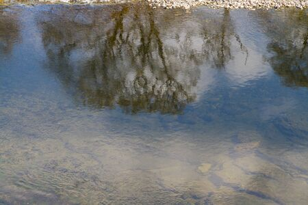Reflection of a tree in river, landscape Фото со стока