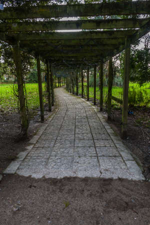 Covered park pathway in winter, paved path, portrait Фото со стока