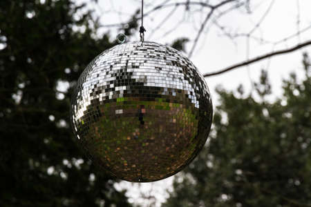 Large mirrorball hanging from a tree.