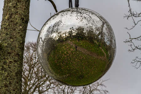 Large mirrorball hanging from a tree, landscape.
