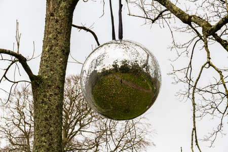 Large mirrorball hanging from a tree, landscape, grey sky.