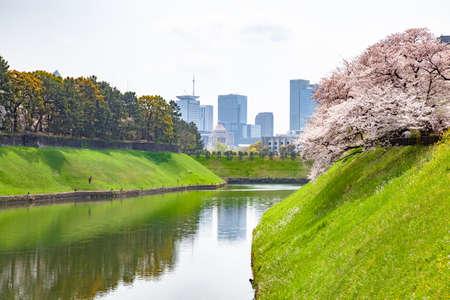 Chidorigafuchi spring
