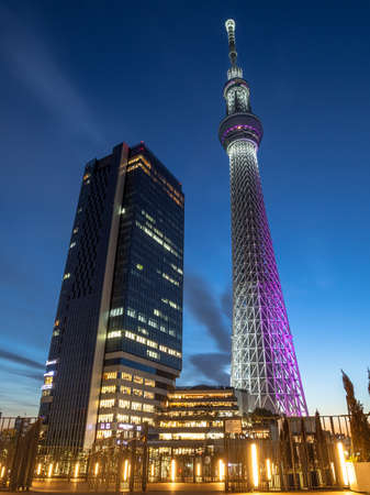 Sky Tree and East tower