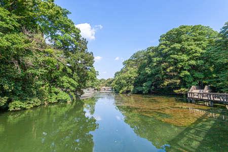 Inokashira onshi Park 写真素材