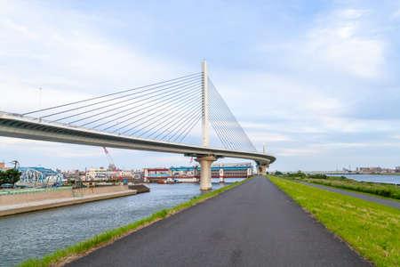 An  only harp bridge.