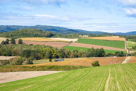 Scenery of Hokkaido Biei Hill
