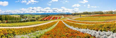 Hokkaido Biei Shikisai no Oka 写真素材