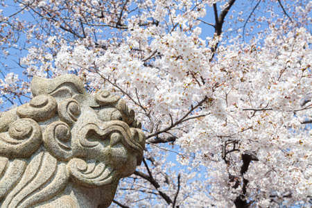 Six Sun King Shrine in Spring