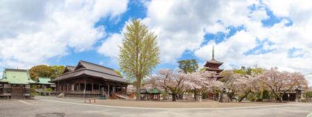 Nakayama Hwasong-ji Temple in Spring