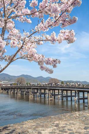 Torshun Bridge and Katsura River in Spring