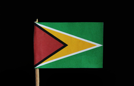 A national flag of Guyana on toothpick on black background. A green field with the black edged red isosceles triangle based on the hoist side superimposed on the larger white golden triangle