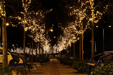 A beautiful christmas alley in the Frydek Mistek city. Christmas coming to Czech republic. Beautiful christmas trees and bulbs near square.