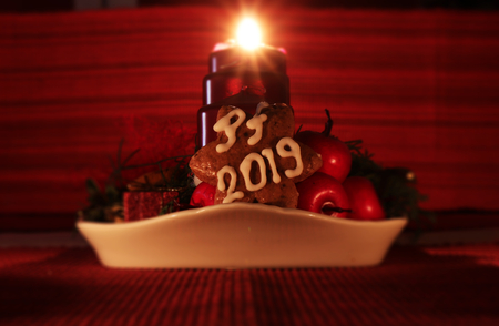 A Homemade gingerbread star covered with white icing in form PF 2019 leaning againts fruits. It is in front of candlestick. And one candle burning.