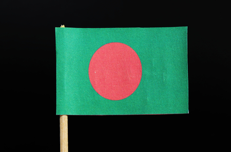 The national flag of Bangladesh on toothpick on black background. A red disc on a green field. Фото со стока