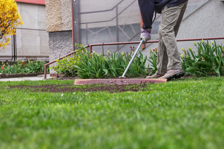 Adult man is trying make surface on same level. Summer worker is editing garden. Man is using tool for aligning the surface in the garden. Planting grass seeds. Rebuilding garden.