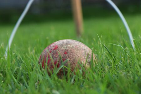 Red old wooden ball of domestic cricket and white plastic barrier and game over. Ideal grass for plays fantastic game cricket.