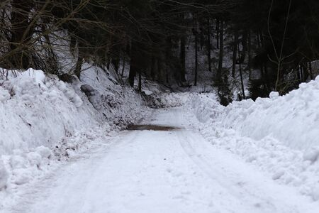 Forgotten forest road is covered with snow and only heavy machine can go through. Mounds of snow on each side of road reaches two metres height. Cruel winter in this country.