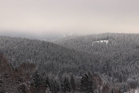 Snow-covered landscape. Grey fog. Mysterious atmosphere in winter time. Grey sky and amazing snowflakes falls the ground and hills.
