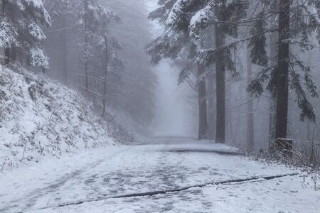Trampled forest paths for tourists chasing this Beskydy mountain in the east of the Czech Republic. Nature is shrouded in white darkness and icy snow.