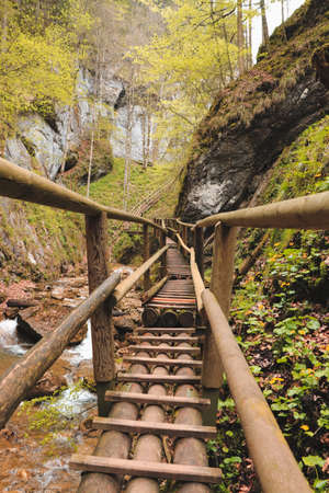 Wooden ladder in the Barenschutzklamm area in Styria, Austria. Beautiful waterfalls in the southeast of Austria connect such wooden ladders. The way up through the abyss.