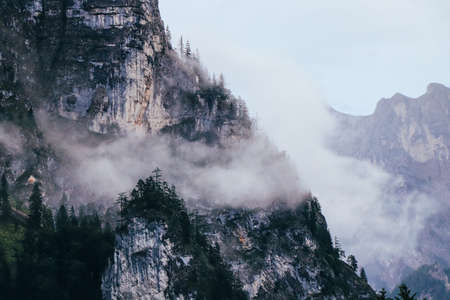 Morning fog in rainy weather covers the peaks of the mountains in the Gesause National Park in central Austria. The side of the rocky mountain Bruckstein submerged in fog and just the top of a tree.