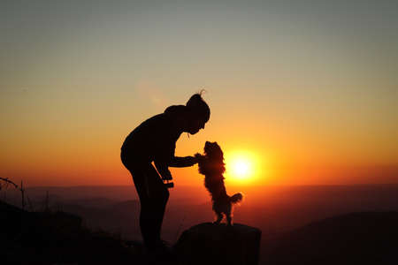 Confidence between a dog and a woman at sunset. Biewer Terrier Dog stands on its back on a tree stump and holds its mistress's hands with its paws and looks at her lovingly. Mountain top and sunset. Stockfoto