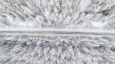Snow covered forest in winter with road cutting through.