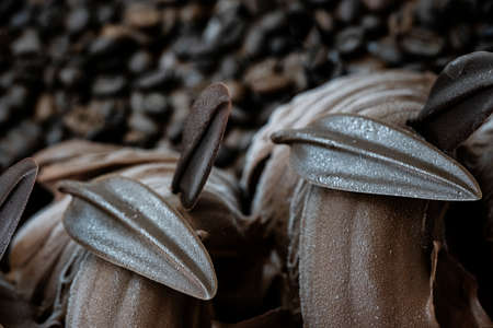 coffee ice cream in the shape of a leaf on a background of coffee beans Stock fotó