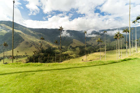 Panoramic Views of The Cocora Valley in Salento, Quindio, Colombia.