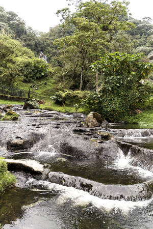 Natural Landscapes of Santa Rosa de Cabal in Risaralda, Colombia.