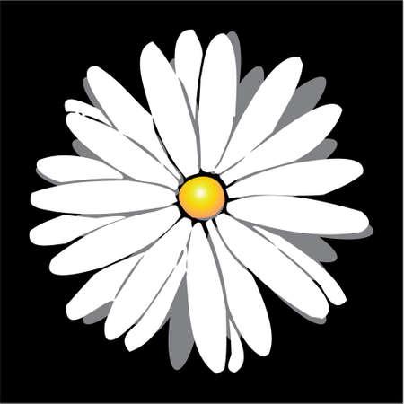 Flower in vector format Illustration